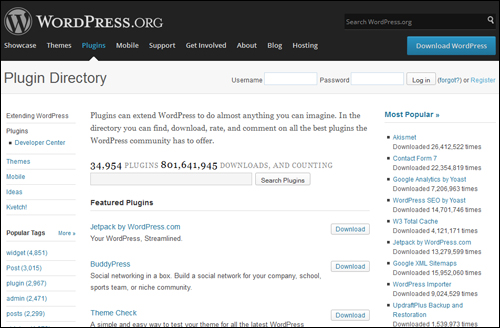 A Basic Guide To WP Plugins